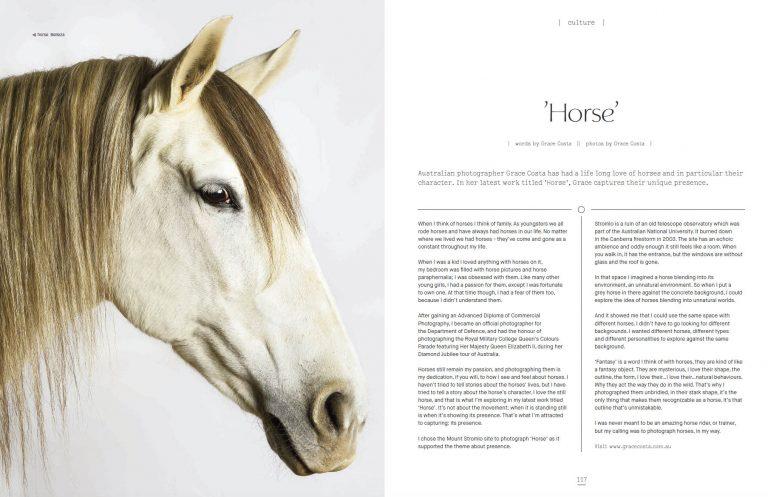 Equine 2