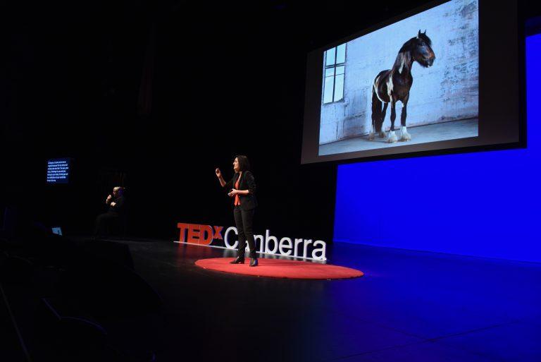 Tedx Canberra Momentum - Grace Costa - 43